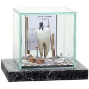 Kunst vitrine supermini 'Witte Tand'