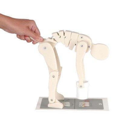 3B Demonstratie til-figuur