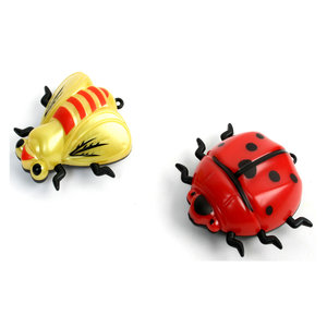 Rijdende insecten NIEUW!