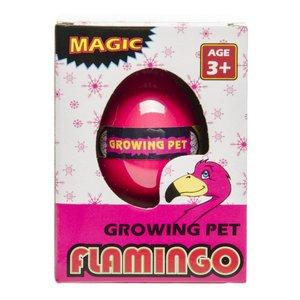 Groei ei flamingo ( Voorraad: 15 stuks OP=OP!)