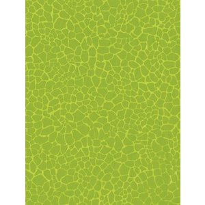 Decopatch Decopatch papier Green