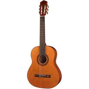 Salvador Cortez CC10JR 3/4-Klassieke gitaar