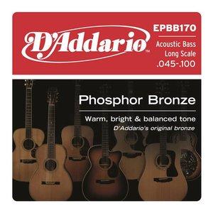 D'Addario EPBB170 Snaren Phosphor Bronze Acoustic Bass