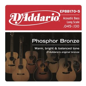 D'Addario EPBB170-5 Snaren Phosphor Bronze Acoustic Bass