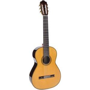 Esteve Torres Klassieke gitaar