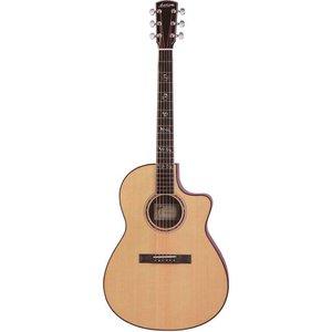 Larrivee LSV-11 Akoestische gitaar