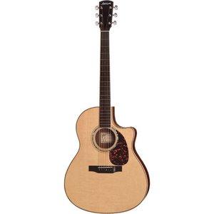 Larrivee LV-09 Akoestische gitaar