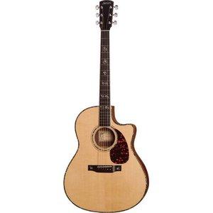 Larrivee LV-10 Akoestische gitaar