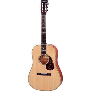 Larrivee SD-50 Akoestische gitaar