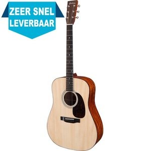 Eastman E10 D Akoestische gitaar