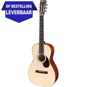 Eastman E10P Akoestische gitaar
