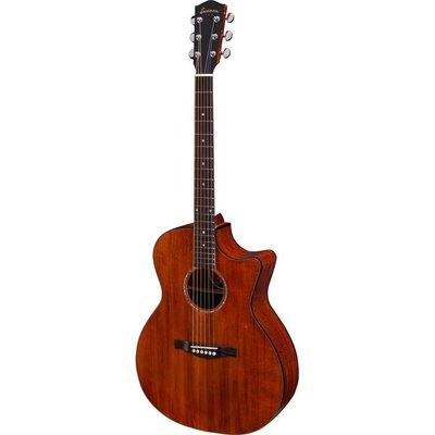 Eastman PCH1-GACE Akoestische gitaar Grand Auditorium Cutaway Classic