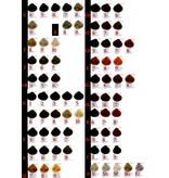 KIS Color Small Set