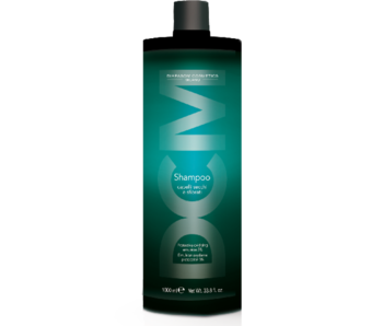 DCM Shampoo Dry Hair 1000ml