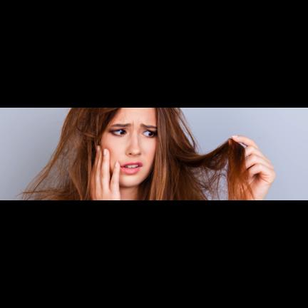 Shampoo voor Beschadigd Haar