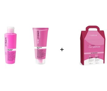 Inebrya No-Yellow Shampoo 100ml  + Mask 100ml  SET