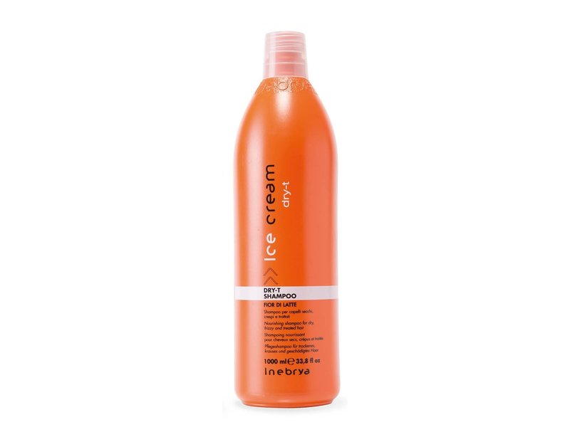 Inebrya Inebrya Dry-T Shampoo 1000ml
