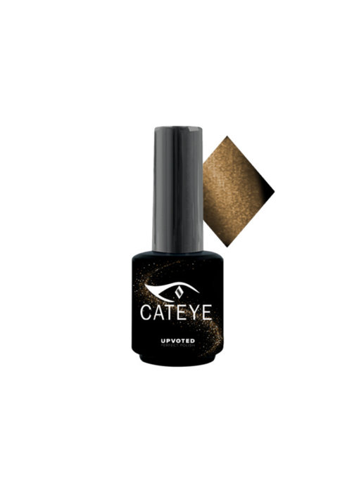 Upvoted CATEYE Maine Coon #001