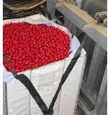 VEGGY103-CP6 faltbarer Schwerlastbehälter, 1200x1000x1030 mm
