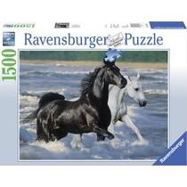 Paarden op t' strand (1500) UC