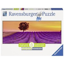 Geurend Lavendelveld (1000)