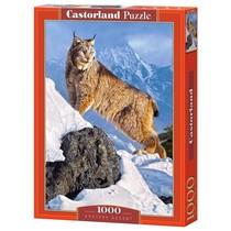 Austere Ascent (1000)
