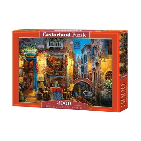 Castorland Our special place in Venice (3000)