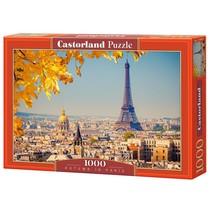 Autumn in Paris (1000)
