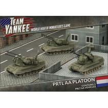 Team Yankee: PRTL AA Platoon