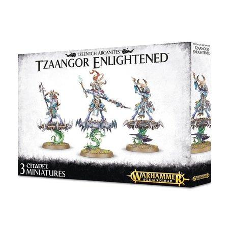 Games Workshop Age of Sigmar Tzeentch Arcanites: Tzaangor Enlightened/Skyfires