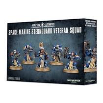 Warhammer 40,000 Imperium Adeptus Astartes Space Marines: Sternguard Veteran Squad