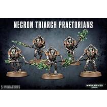 Warhammer 40,000 Xenos Necrons: Triarch Lychguard/Praetorians
