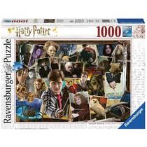 Harry Potter tegen Voldemort (1000)