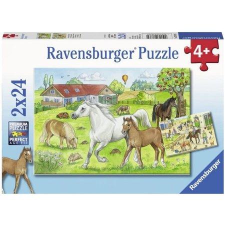 Ravensburger Op de Manege (2x24)