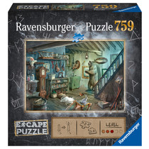 Escape puzzle: Forbidden Basement (759)