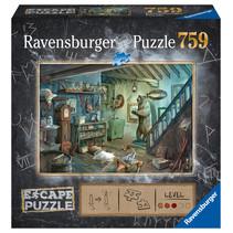 Escape puzzle: Forbidden Basement (759)
