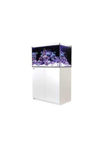 Red Sea Reefer 250 - Wit