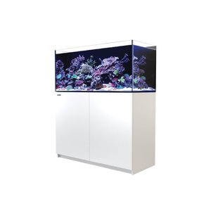 Red Sea Reefer 350 Reef System - Wit
