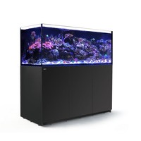 Red Sea Reefer XXL 625 - zwart