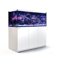 Red sea Reefer XXL 625 - Wit
