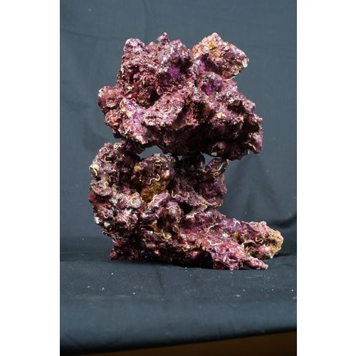 Real Reef Real Reef Rock Medium/Large box 4th generation L