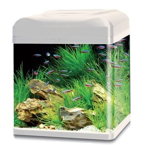 HS Aqua HS Aqua aquarium lago 50 LED wit