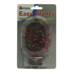 SuperFish SuperFish Easy plants voorgrond 13 cm nr.7