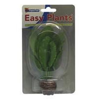 SuperFish Easy plants voorgrond 13 cm nr.10