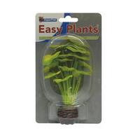 Superfish easy plants voorgrond 13 cm nr. 5 Zijde