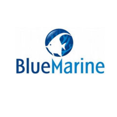 Blue Marine Aquaria