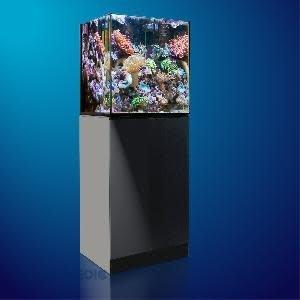 AQUA MEDIC Aqua Medic Xenia 65 graphite-black