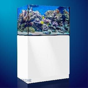 AQUA MEDIC Aqua Medic Xenia 100 white