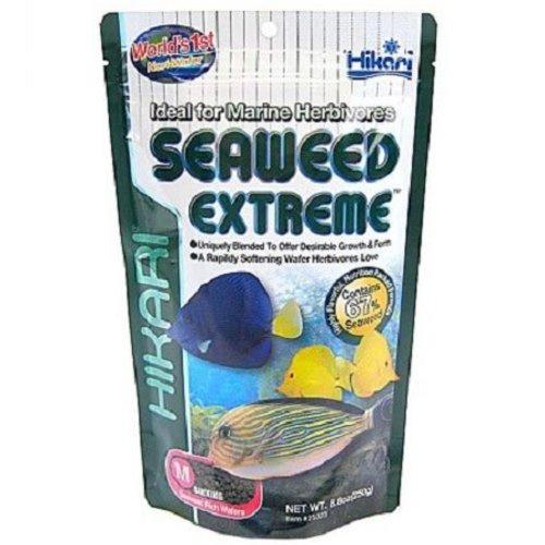 Hikari Hikari Marine Seaweed Extreme Medium wafers 250 gram