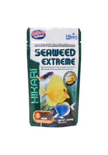 Hikari Marine seaweed ex small pellets 100g